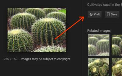 Google verwijdert knop met directe url bij Afbeeldingen-zoekmachine